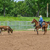 2019_XIT Jr Rodeo_ #4_Boys Steer Stop-42