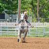 2019_Jr XIT Rodeo_#2_Girls Poles-50