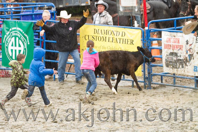 gmc_rodeo_9422