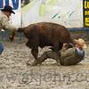 gmc_rodeo_9175