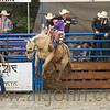 gmc_rodeo_9510