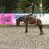 gmc_rodeo_9071