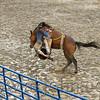 gmc_rodeo_9124