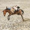 gmc_rodeo_9118
