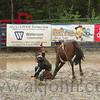 gmc_rodeo_9081