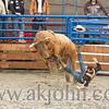 gmc_rodeo_9207