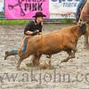 gmc_rodeo_9143