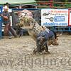 gmc_rodeo_9193
