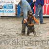 gmc_rodeo_9600