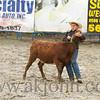 gmc_rodeo_9164