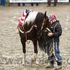 gmc_rodeo_9022