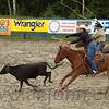gmc_rodeo_9294