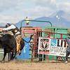 rodeo_finals_16_943
