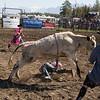 rodeo_finals_16_321