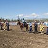 rodeo_finals_16_041