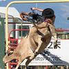 rodeo_finals_16_917