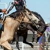 Rodeo HC 006210511