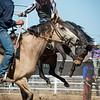 Rodeo HC 006210504