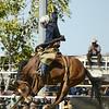 Rodeo HC 006210034