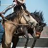 Rodeo HC 006210505