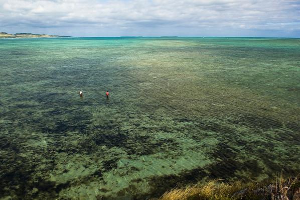île de Rodrigues