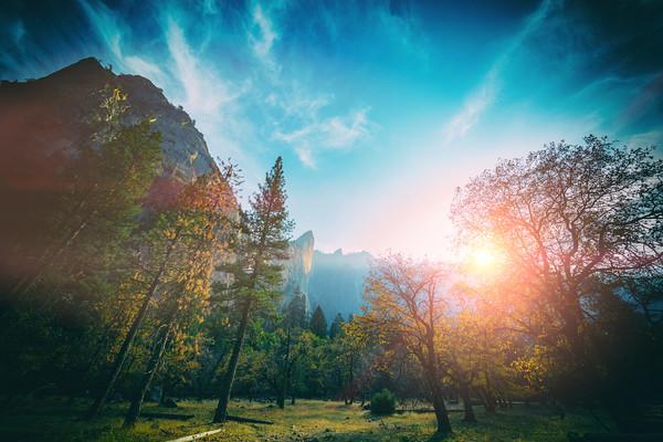 Yosemite Cathedral Rocks Bridalveil Wide Angle