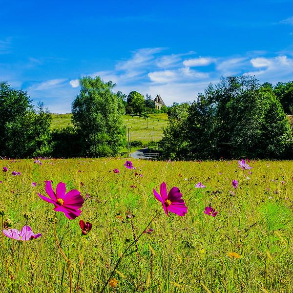 22. Wildflower meadow Monpazier France