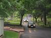 Silently filing through Glenwood Cemetery Houston
