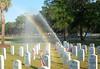 2nd Prize Travel & Scenery<br /> Cheryl Hurd - Beaufort Cemetery