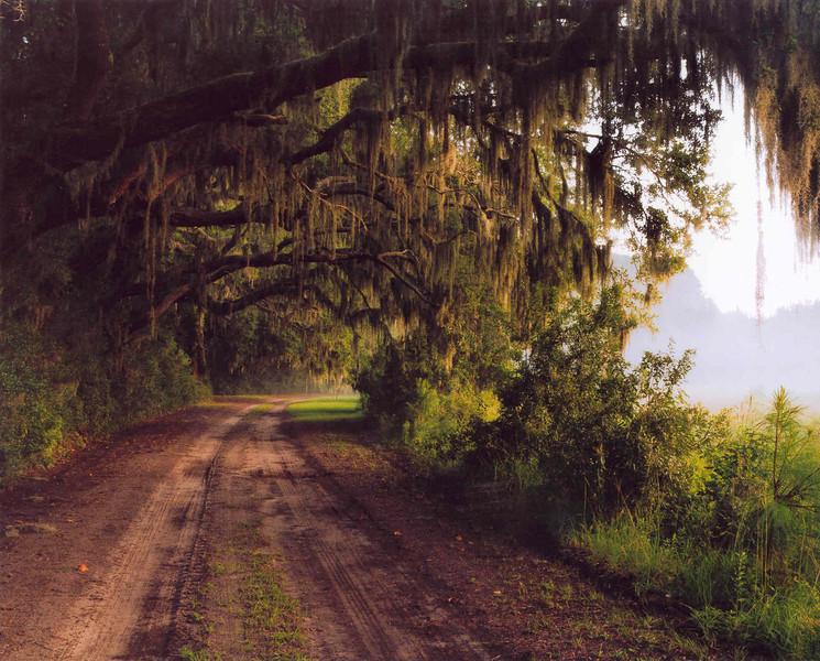 1st Prize: Travel & Scenery<br /> William B. Ellison, MD