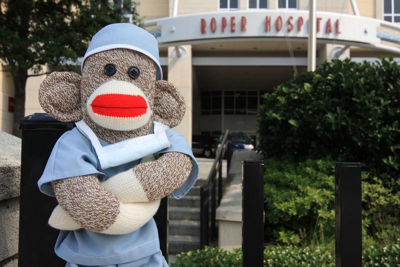 sock monkey joanperry