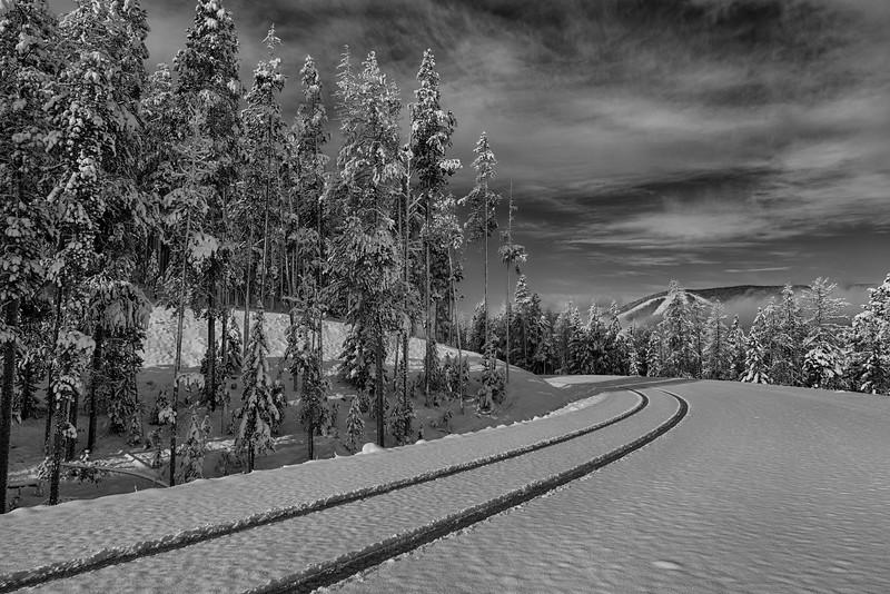 First Tracks - Near Polaris, MT