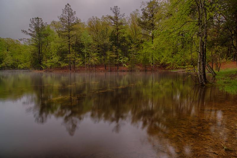 Cedar Pond - Land Between the Lakes, TN