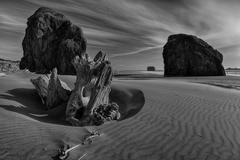 Driftwood - Gold Beach, OR