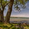 Lakefront Bird House - Watkins Glen, NY
