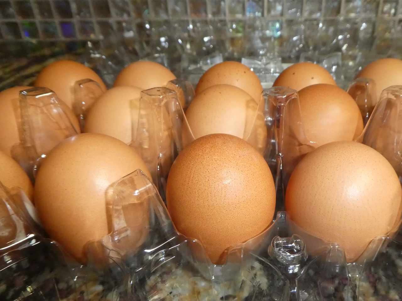 How to Store Eggs Correctly
