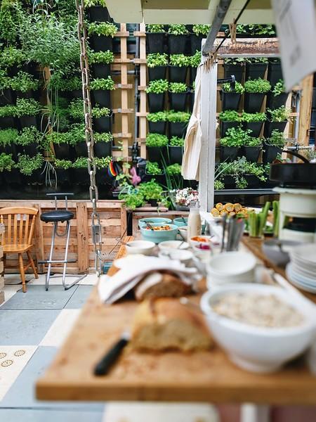 DIY hydroponic System