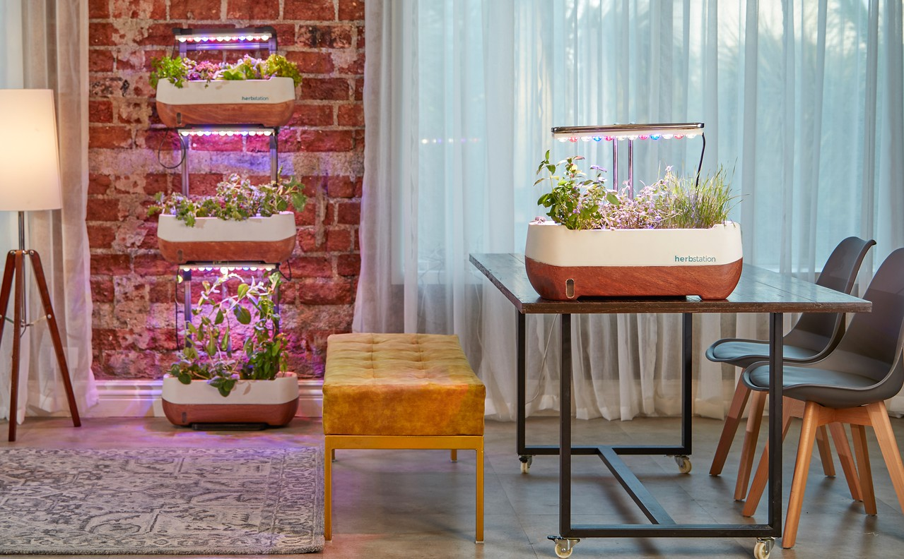 Why Plants Need the Best LED Grow Lights