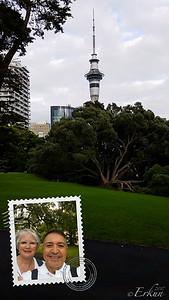 Auckland - Sky Tower from Albert Park
