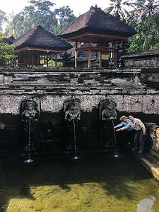 Goa Gajah (Elephant Temple)