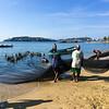 Fishermen & Entourage