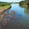 Tarcoles River & Crocs