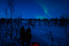 8 day dog sledding in Swedish Lapland