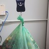 Weighing compost collected in a biodegradable bag in the SUST Lab as part of the AUD Composting Pilot Project.