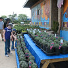 Outside, we check out the potted lavender and admire the large mural, where art and urban ag meet.