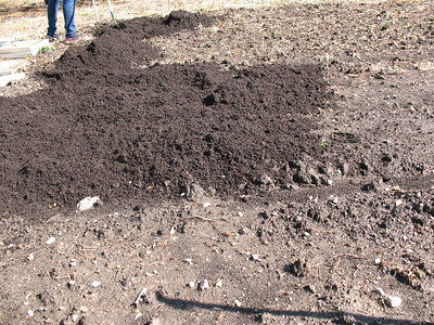 Last week the entire garden was doubled in size and then rototilled. Gardeners and Soil Service Day volunteers added a few inches of rich compost to the soil today, the first such soil amendment in the garden's brief one-year history.