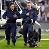 CHUCK, THE POLICE DOG ARRIVES WITH THE GAME BALL