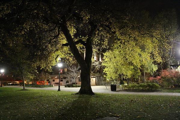 Voorhees Mall at Night, Nov. 14, 2013