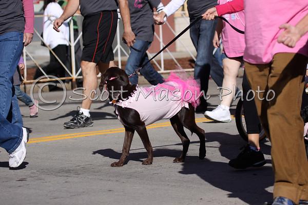 Gloria Gemma 5K Dogs