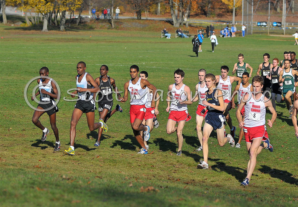 NCAA Division 2 Cross Country